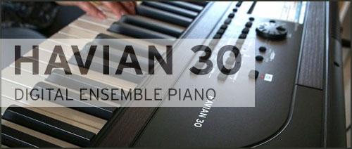 Stage piano s doprovody Korg Havian 30